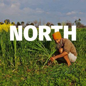 North Zone - Ghaziabad, Faizabad (UP) and Alwar (Rajasthan)